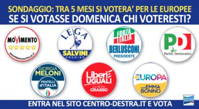 elezioni europee sondaggi politici
